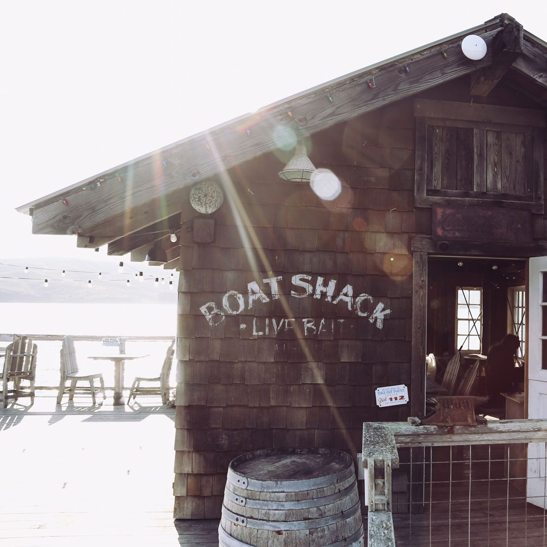 Oyster Restaurants in Marshall Point Reyes Tomales Bay